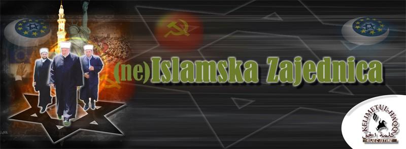 Ne islamska zajednica